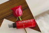 Why Rose Beauty? Ausganica's Founder Explains Why Rose Is So Effective