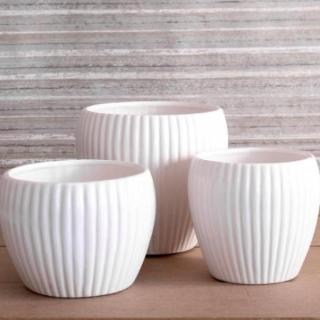 Octavia - White Ribbed Ceramic Pot