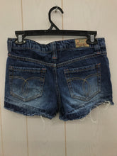 Load image into Gallery viewer, Blue Womens Size 3 Shorts