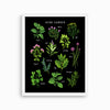 Herb Garden Art Print | Dark - Linden Paper Co. , Art Prints - Stationery Brand, Linden Paper Co. Linden Paper Co., Linden Paper Co.  Linden Paper Co.