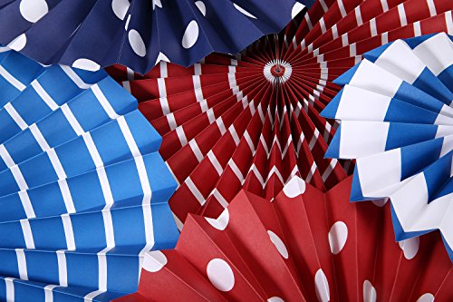 12 Paper Fans - Party Decoration