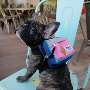 Backpack Harness - Pink