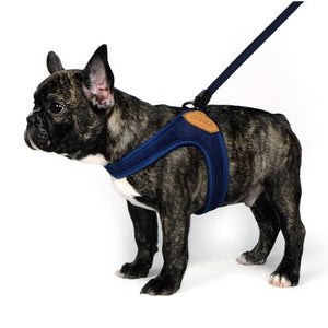Easy Harness -Navy