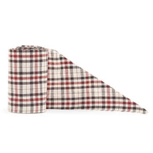 Load image into Gallery viewer, Necktie - Classic Plaid