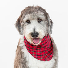 Load image into Gallery viewer, Neckwear - Red Plaid