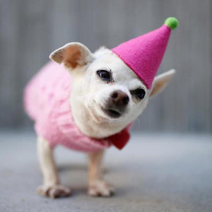 Pawty Hat - Light Pink