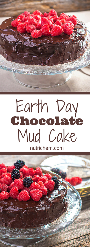 Earth Day Chocolate Mud Cake