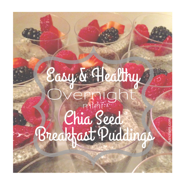 Easy & Healthy Overnight Mini Chia Seed Breakfast Puddings