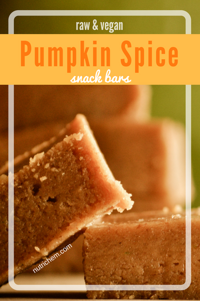 Pumpkin Spice Snack Bars - a NutriChem recipe that's perfect for autumn!