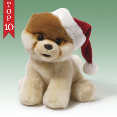 Santa Boo, World's Cutest Dog