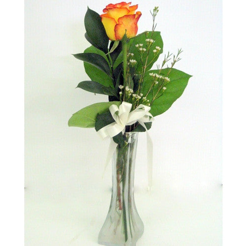 Single Rose Bud in Vase - FS