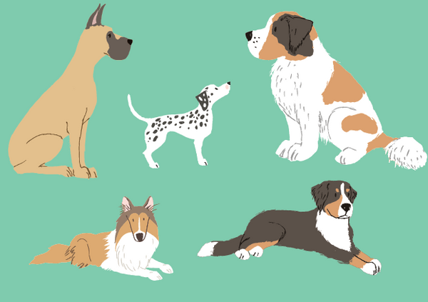 Perfect Pets Dog Sticker Set - 32 four legged friends
