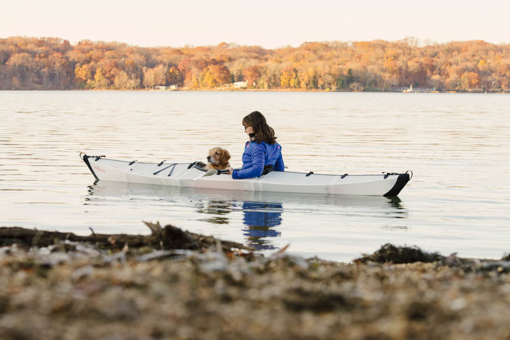 Dogs in Oru Kayaks