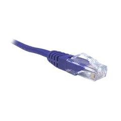 Purple CAT6 UTP Patch Lead Dueltek