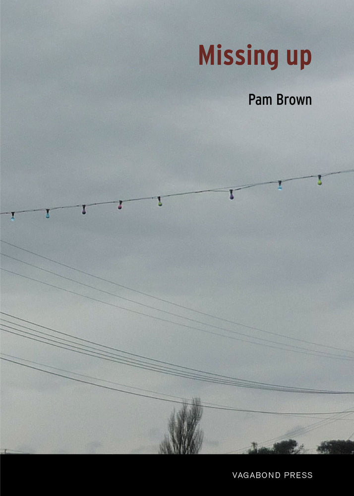 Pam Brown, Missing up