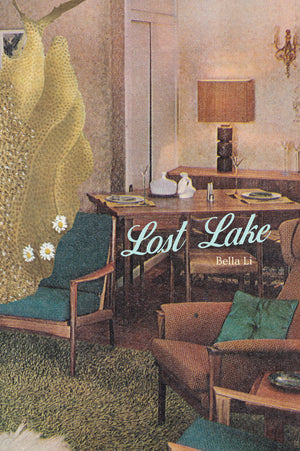 Load image into Gallery viewer, Bella Li, Lost Lake (Limited hardback edition of 30 signed copies)