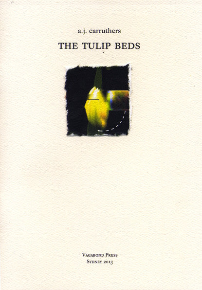 A.J.Carruthers, The Tulip Beds
