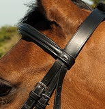Heritage English Leather Bridle With Raised Cavesson Noseband - 4Pony.com