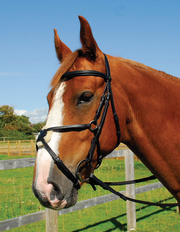 Heritage English Leather Bridle With Mexican Noseband - 4Pony.com