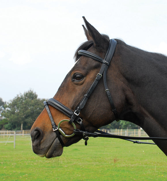 Heritage English Leather Comfort Bridle With Flash Noseband - 4Pony.com