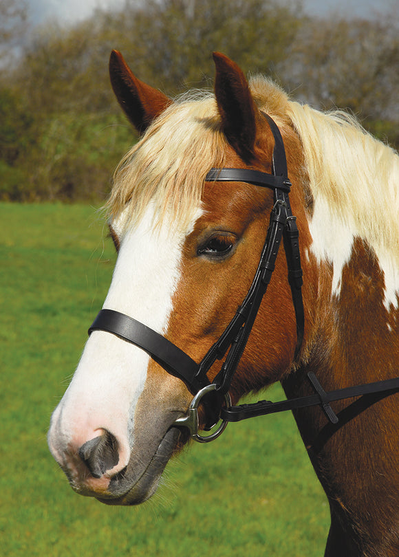 Heritage English Leather Hunter Bridle With Wide Cavesson Noseband - 4Pony.com