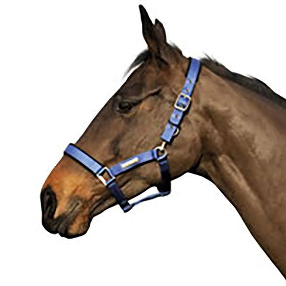 Cottage Craft Headcollar Turnout Safe Royal