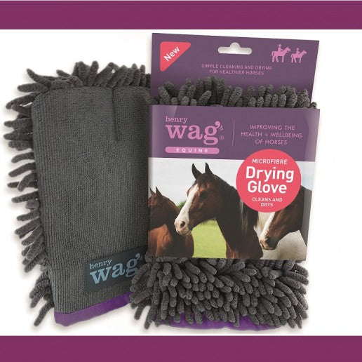 Henry Wag EQUINE Drying Glove