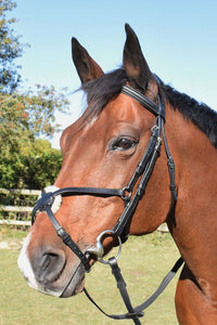 JHL Grakle Bridle