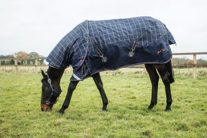 Mark Todd Mediumweight Turnout Rug Plaid