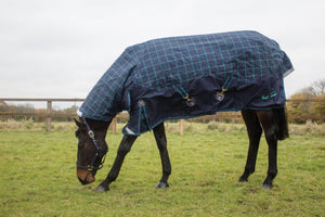 Mark Todd Heavyweight Combo Turnout Rug Plaid