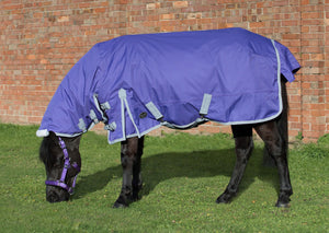 Mark Todd Mediumweight Pony Turnout Combo Rug