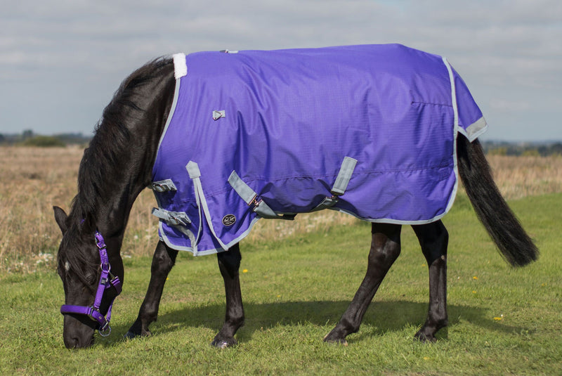 Mark Todd Lightweight Pony Turnout Rug