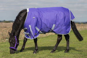 Mark Todd Mediumweight Pony Turnout Rug