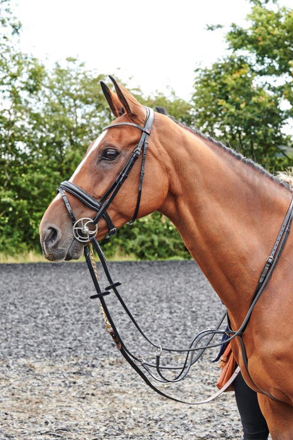 Whitaker Bling Bridle Barton