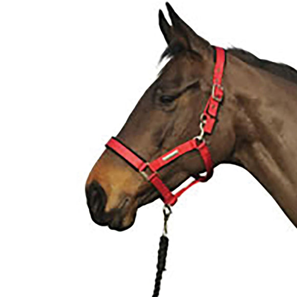 Cottage Craft Headcollar Turnout Safe Red - 4Pony.com