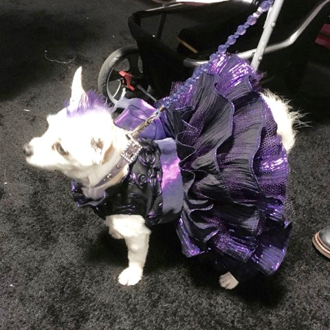 purple tiered dress for Le Chien 2016