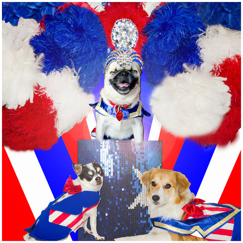 Red white an blue outfits for the Fabulous Feather and Fur Follies