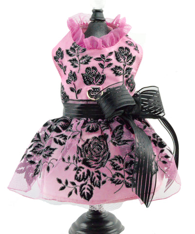 dog dress for Le Chien