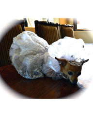 Dog Bride's Gown and Headpiece