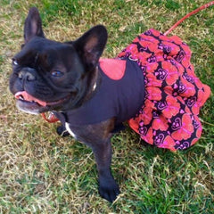 Valentine Love Harness Dog Dress