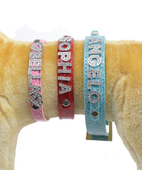 Slide and Hanging Charms for Personalized Pet Dog Collars