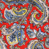 Ayatollah Paisley Pocket Square Fabric