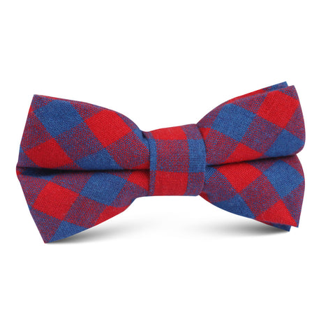 Blue & Red Gingham Kids Bow Tie