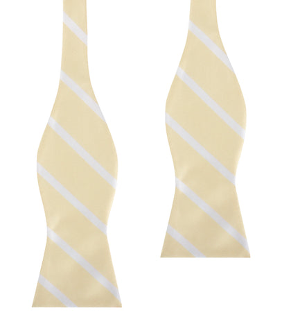 Champagne Stripe Self Bow Tie