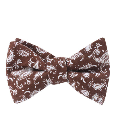 Florence Paisley Brown Self Bow Tie