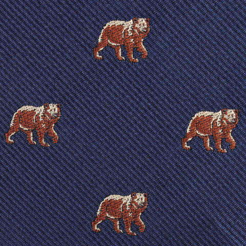 Grizzly Bear Pocket Square