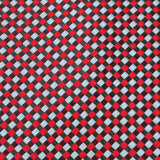 Navy and Light Blue Red Checkered Fabric Skinny Tie X283