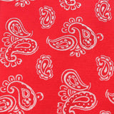 Paisley Red Fabric Pocket Square X255