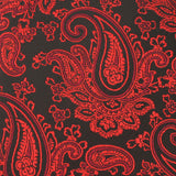Paisley Red and Black Fabric Pocket Square X718