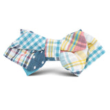 Palid Blue Gingham Cotton Polka Dot Kids Diamond Bow Tie